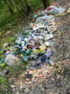 Organiser tous les ans une journée pour le ramassage des ordures sur le territoire en collaboration avec la Mairie et l'Ecole de Hanches et en profiter pour initier la jeunesse à la connaissance de la faune sauvage